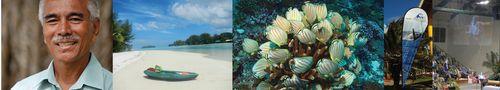 Pacific Oceanscape Blog 13inx100dpi
